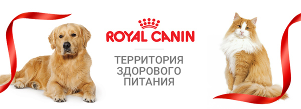 Сухой корм Royal Canin для собак - купить в Екатеринбурге