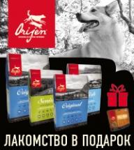Лакомство в подарок при покупке корма Orijen!