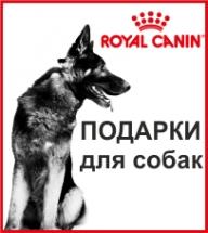 Подарки для собак от Royal Canin!