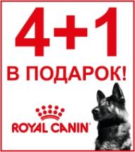 4+1 до 15 кг корма Royal Canin для собак В ПОДАРОК!