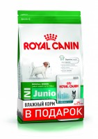 Mini Puppy (Junior) (Royal Canin для юниоров мел. пород /2-10 мес./, 800гр + 1 пауч) (3054087)