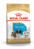 Shih Tzu Junior (Royal Canin для щенков Ши Тцу) (185005) - Shih Tzu Junior (Royal Canin для щенков Ши Тцу) (185005)